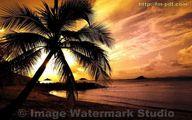Image Watermark Studio - Sample #1