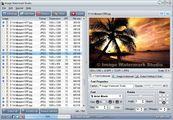 Image Watermark Studio - Text watermark settings tab